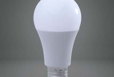 đèn búp led duhal ở tphcm